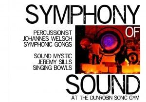 CONCERT – Symphony of Sound 16/02/2013