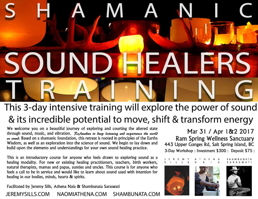 Sound-Healers-Training-level-1-APR2017